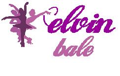 Elvin Bale Müzik ve Sanat Kursu